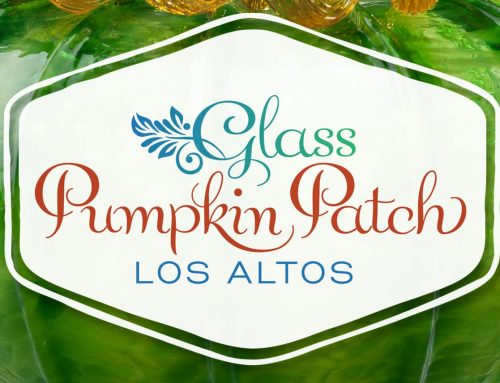 Glass Pumpkin Patch, Los Altos